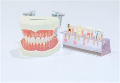 尼崎でインプラントをするなら【南林歯科クリニック】で~最新鋭の機器で正確な診断と安全な治療を~